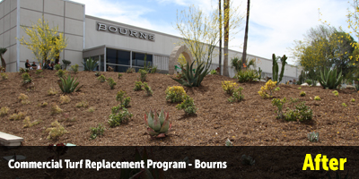 Turf Replacement Bourns Inc