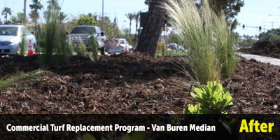 Commercial Turf Replacement Program - Van Buren Median